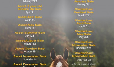 ascot-chelt-cc-sales-dates-2016-press_thumb_medium500_792